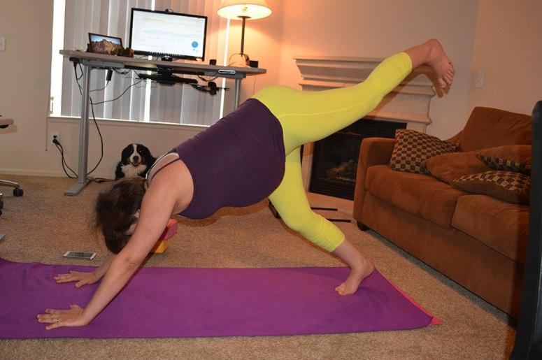 3-legged-downward-facing-dog-prenatal-yoga